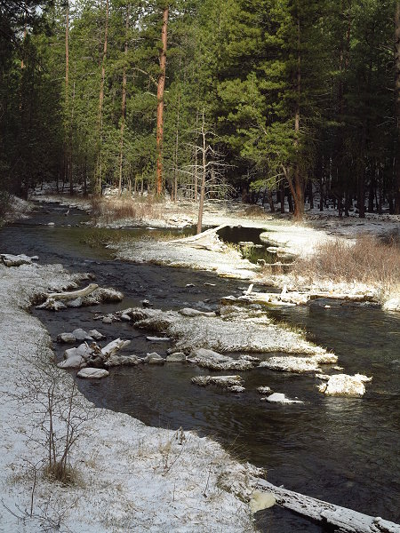 paulina-creek-2-020.jpg