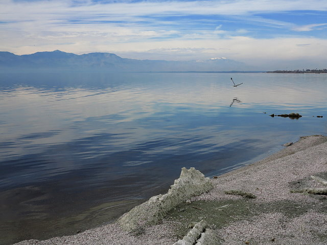 Winter Journey – Salton Sea – February 2017