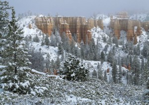 Winter Journey – Snow in Bryce Canyon– March 2017 (31)