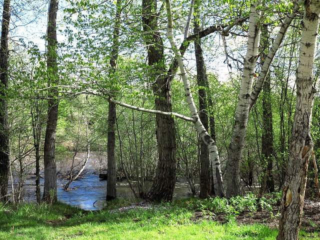 Spring Journey – Divide Bridge Campground – May 2017 (14-15)