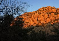 Cochise Stronghold Days – Winter Journey – February 2018
