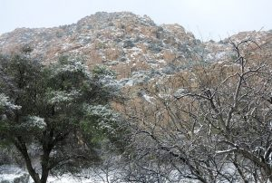 Snow Day at Cochise – Winter Journey – February 2018