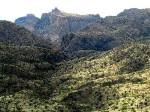 Mount Lemmon – Winter Journey – March 2018