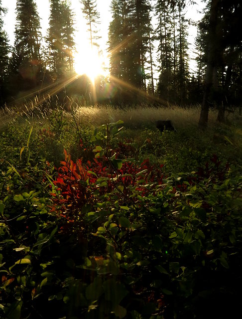 Sundown at Seeley Lake Campground