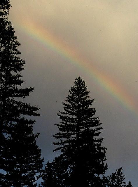 The fading rainbow