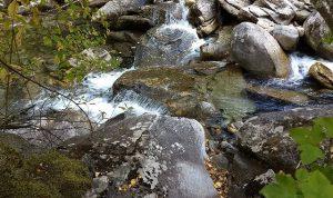 Kootenai Creek Hike – September 2018