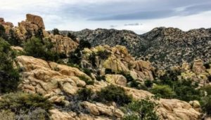 Hiking Cochise Trail – March 2019