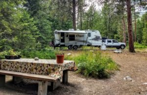 Bass Creek: We Have Arrived – July 2019