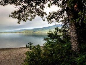 Swan Lake  – August 2019