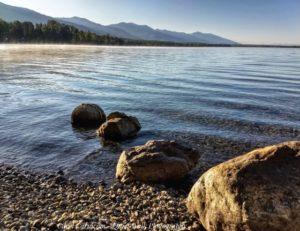 More Swan Lake Days – August 2019