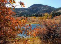 Trip to Abajo Mountain – October 2019