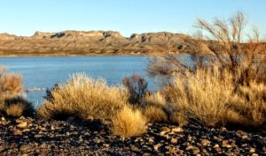 More of Elephant Butte – December 2019