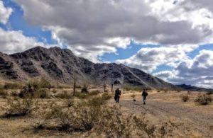 My Desert Birthday – February 2020