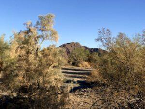 Arizona Here We Come – November 2020